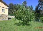 caca-818-jardines-4